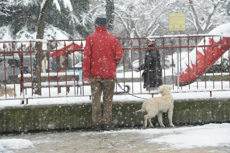 Otro día nevado en Álava
